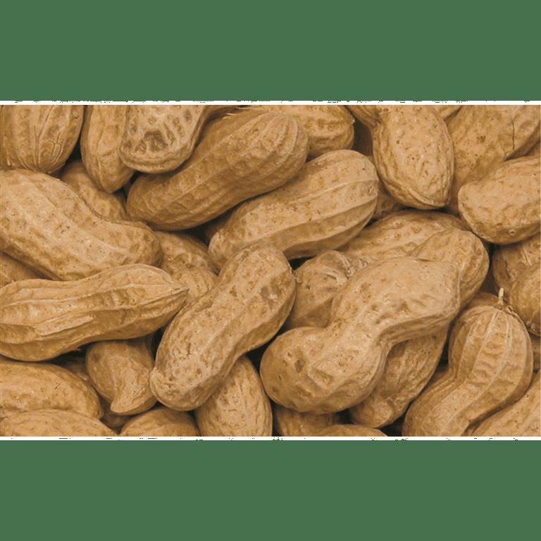 Peanøtter med skall 400gr