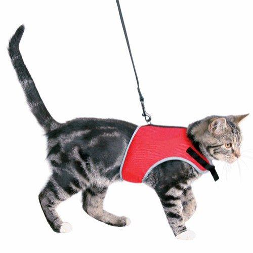 Kattesele soft med leiebånd